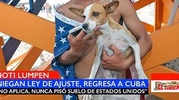 Chiquitica , la perrita cubana balsera